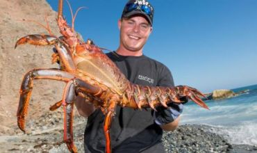 Recreational Spiny Lobster Season Open